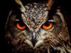 Советы по станковому оружию - последний пост от  Owl